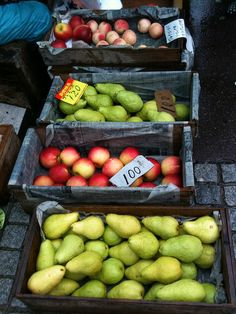 harvest apples and pears