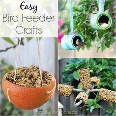 32 Homemade Bird Feeders To Make. Most - if not all - are kid-friendly projects.