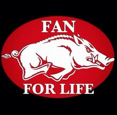 Arkansas Razorbacks WPS!!!