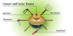 orto(e)cultura: I LAVORI ESTIVI NELL'ORTO