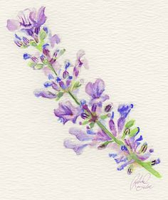 The Jellybean Tree: Color Flavor: Lavender