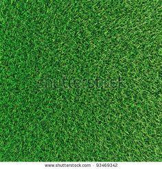 Green grass background texture by serg dibrova, via Shutterstock