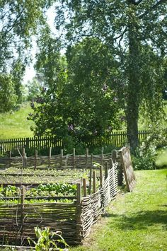 garten hochbeet Hemlngtan: Trdgrd I love the old medieval style fences.like Ca. - garten hochbeet Hemlngtan: Trdgrd I love the old medieval style fences…like Cadfaels garden! Garden Fencing, Garden Beds, Garden Landscaping, Wattle Fence, Gardenias, The Secret Garden, Edible Garden, Dream Garden, Garden Cottage