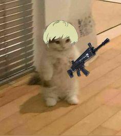 Anime Kitten, Gato Anime, Funny Cat Wallpaper, Naruto Shippuden Anime, Mood Pics, Funny Cats, Cosplay, Random, Hair Styles