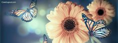 Lovely Butterfly and Flowers Facebook Cover coverlayout.com