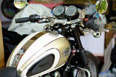 Triumph Bonneville T100, Motorcycle, Motorcycles, Motorbikes, Choppers