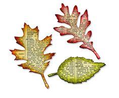 Amazon.com: Sizzix Bigz Die - Tattered Leaves by Tim Holtz