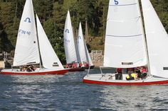 Soling Classic -purjehdukset yritystilaisuuksiin ja illanviettoihin