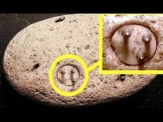 The Most Mysterious Ancient Artifacts. Scientists uncover mysterious artifacts all the time. These historical ancient artifacts are very mysterious. Aliens And Ufos, Ancient Aliens, Ancient Art, Ancient History, Ancient China, Out Of Place Artifacts, Ancient Astronaut Theory, Objets Antiques, Architecture Antique