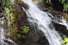 Foto: Carlos Alberto/ Imprensa MGUberlândia, – MG, Brasil- O Parque Estadual do Pau Furado, localizado em Uberlândia, no Triângulo Mineiro