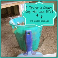 It's that time of year when I do a major coop cleaning and this year, it's an easier task than ever before due to a few simple modifications that were made in our coops.