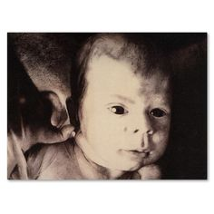 "Trademark Art 'And What' by Nick Bantock Graphic Art on Wrapped Canvas Size: 24"" H x 32"" W x 2"" D"