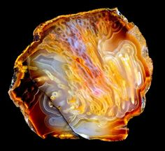 """This stone was listed as being """"Sumatran Agate"""". To me, it looks a LOT like """"Agatized Petrified Wood""""."""