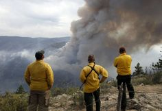 Loggers Forest Service policies increase fire danger