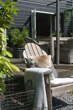 Adirondack chair/deck/pergola