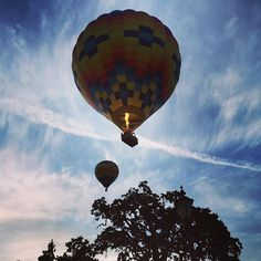 This is the life! #napavalleyaloft #Yountville #picoftheday #instapic #instafame #bluesky #hotairballoon #doNapa #visitNapaValley #igers #igfame #travel #Napa @visitnapavalley by rayl1307