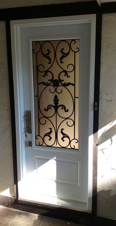 Single door/half glass with Wrought Iron. Front entry door. Love the idea of something like this...