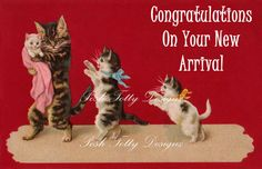 1904 Victorian Kittens Congratulations On Your by poshtottydesignz