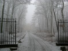 Wiesbaden, Germany Where we will be must find this place Haunted Places, Winter Garden, Gothic Fashion, Women's Fashion, Places To See, Abandoned, Paths, Beautiful Places, Germany