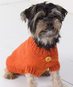 This is a great pattern - easy to follow, clear directions. Makes a nice, warm sweater for your dog. I made it in flame orange for the dog to wear in the woods (so as not be mistaken by hunters).