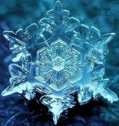 Naturijke symmetrie