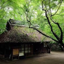 奈良公園 蛍 - Google 検索