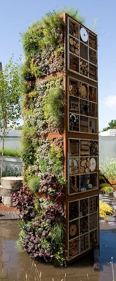 """Tower containing living wall and bug boxes or insect hotels. """"Future Nature"""" Garden, by Ark Design Management Ltd, RHS Chelsea Flower Show - """"Future Nature"""" Garden, Chelsea 2009 Bug Hotel, Insect Hotel, Chelsea Flower Show, Preschool Garden, Diy Garden Projects, Back Gardens, Garden Art, Tower Garden, Garden Club"""