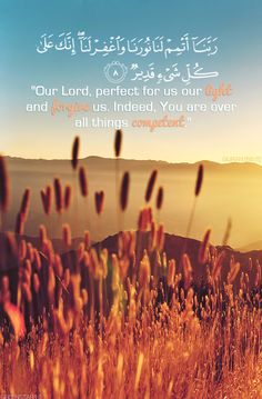 Noble Quran.