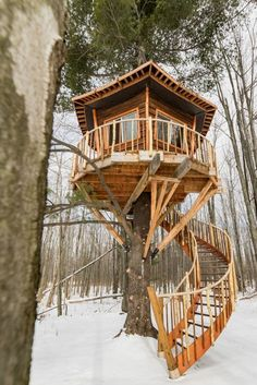 Love This Treehouse Designed By Buffalo Treehouse Asheville Glamping Is Planning On Building Another Treehouse With A Spiral Staircase Like This One. Snap To Keep Up With Our Treehouse Vacation Rentals At Asheville Glamping In North Carolina Beautiful Tree Houses, Cool Tree Houses, Build Your House, Building A House, Asheville Glamping, Treehouse Vacations, Tree House Plans, Diy Tree House, Tree House Designs
