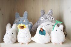 Totoro | 我々が飛ぶ。。。