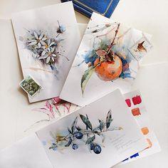 Flowers sketchbook on Behance. Flowers sketchbook by Katerina Pytina on Behance. Watercolor pomegranate, wild flowers