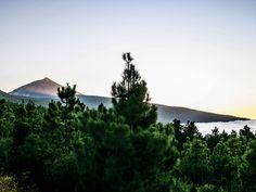 Vista panorámica de Tenerife. Foto: Ramón Pérez