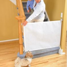 Great Bindaboo Retractable Fabric Dog Barrier Gate. Durable Mesh Fabric Dog Gate  Opens Up To 55