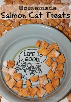 Even the pickiest cat won't refuse these crunchy homemade salmon cat treats. With just a little effort you can bake 500 kitty treats for a fraction of cost