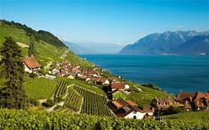 lagos ginebra suiza - Buscar con Google