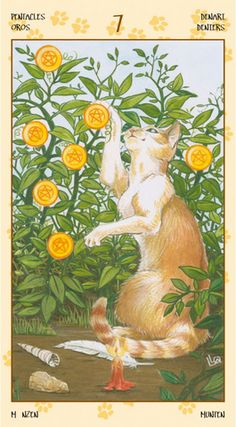 Tarot of Pagan Cats - Seven of Pentacles