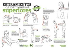 Tabla de ejercicios de estiramiento para el miembro superior.
