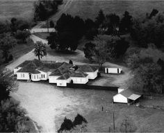 Image result for chicken ranch texas Ranch Chicken, Historical Association, The Past, Texas, History, Boards, Painting, Image, Planks
