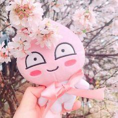 Peach Tumblr, Apeach Kakao, Catty Noir, Duck Toy, Kakao Friends, Peach Aesthetic, Just Peachy, Cute Backgrounds, Everything Pink