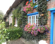 Image detail for -love the beautiful window boxes they create.