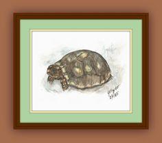 Turtle Painting.Reptile Art. Watercolor for Digital by HyJackArt