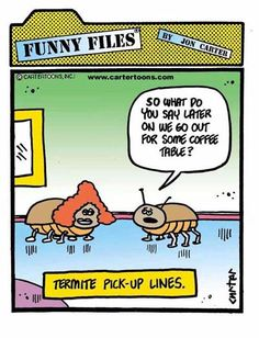 How termites date #Pests #PrecisePestControl http://www.arrowservices.com/