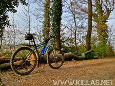 #Mountainbike #Stadtwald #Iserlohn #Wald