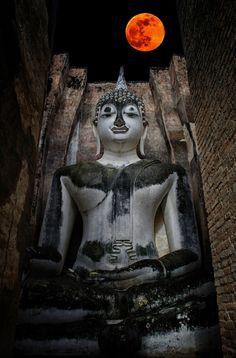 Pra Ajana at Wat Sri Chum, Sukothai, Thailand Laos, Temple India, Buddha Temple, Orange Wallpaper, Gautama Buddha, Buddhist Art, Beautiful Buildings, Taipei, Thailand Travel