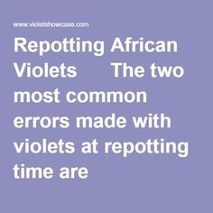 Repotting African Violets The two most common errors made with violets at repotting time are