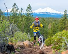 No hay nada mejor para los dueños de perros que llevar a su amigo de cuatro patas a dar un paseo, mientras la nueva temporada comienza a ponerse en marcha. Antes de que los relojes retrocedan y el clima frío