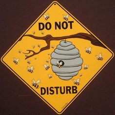 BEE DO NOT DISTURB  Sign print decor art hive apiary painting picture home bees