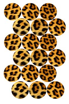 Pink Leopard Print Bottle cap image pack Formatted for printing on x photo paper Bottle Top Crafts, Bottle Cap Projects, Diy Bottle, Bottle Cap Art, Bottle Cap Images, Pink Leopard Print, Pendant Design, Circle Shape, Collage Sheet