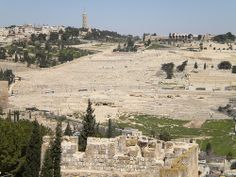 Mount of Olives Jerusalem Israel as seen from the wall of Jerusalem's Old City