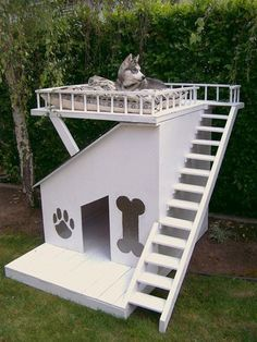 Dog House. A little excessive, but perfect for Eros' need to keep an eye on the neighbors!!